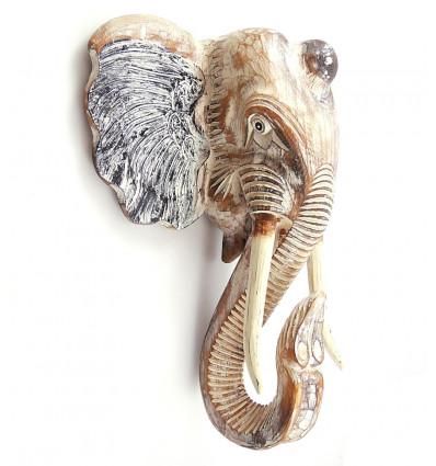 La testa di un elefante in un bosco, grande trofeo di caccia, muro, acquisto.