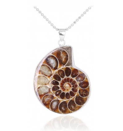 Collier avec pendentif Ammonite Fossile