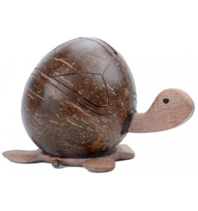Piggy bank Turtle made of coconut