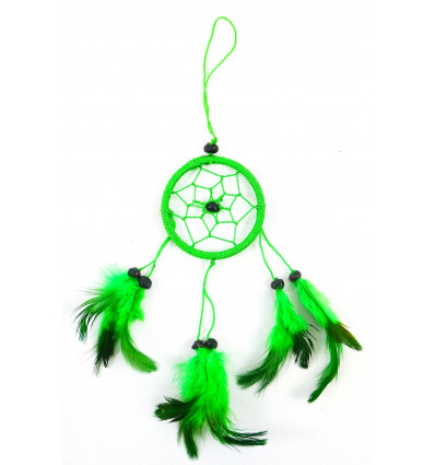 Buy catcher dream cheap green mirror or jewelry bag