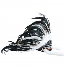 Headdress of indian chief, realistic, buying fancy dress native american feathers.