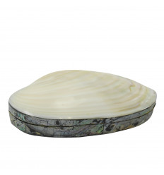 Mother-of-pearl abalone-shaped velvet box surrounded by mother-of-pearl marquetry
